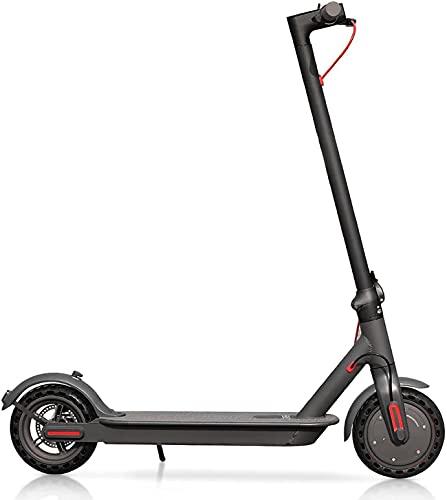 E365 350W Electric E-Scooter