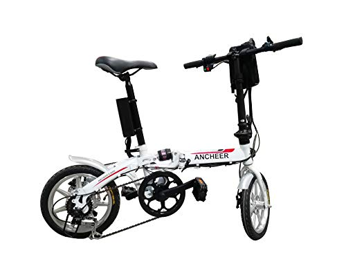 Victagen Folding Electric Bicycle