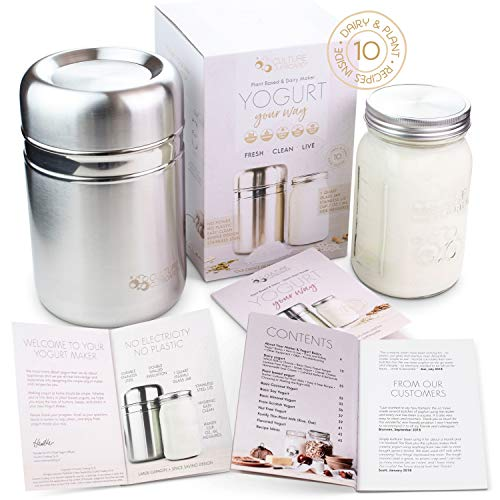 Country Trading Co Stainless Steel Yoghurt Maker
