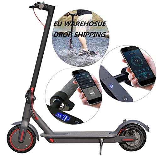E365 350W Electric E-Scooter
