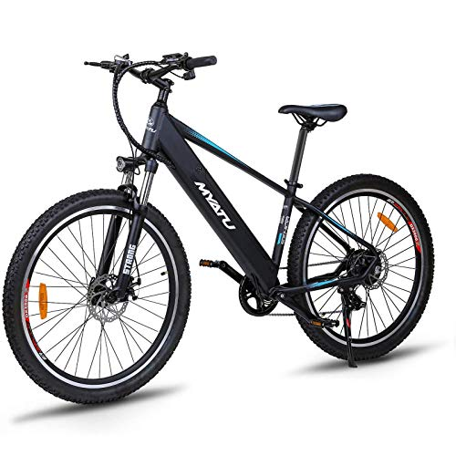 Victagen Electric Bicycle